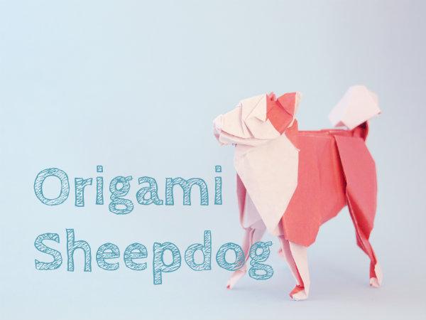 【動物の折り紙】秋田犬みたいなシープドッグ