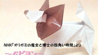 折り紙ファン必見!Eテレ「オリガミの魔女と博士の四角い時間」