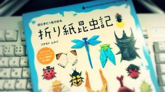 夏休みの自由研究にも!書籍「折り紙昆虫記」での標本作りが楽しそう